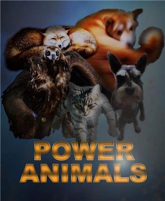 超能力动物们