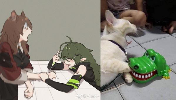 明日方同人之干员版猫咪遇上鳄鱼