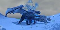 创造与魔法北境骨龙饲料 冰龙怎么抓