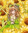 小花仙手绘雏菊与葵-4399文曲Venus