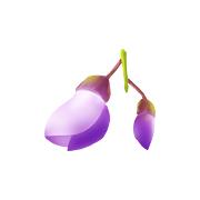 造梦西游5紫藤萝