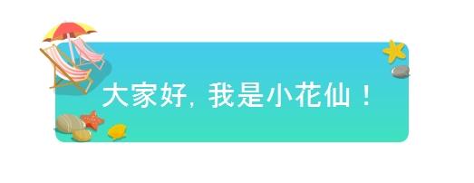 小花仙0823活动预告11