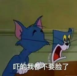 猫和老鼠真人电影