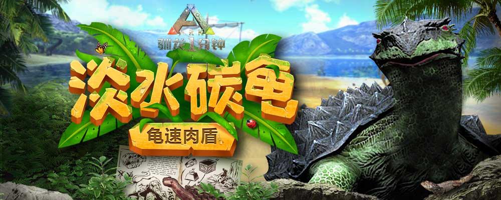 【驯龙一分钟】第54期:龟速肉盾——淡水碳龟