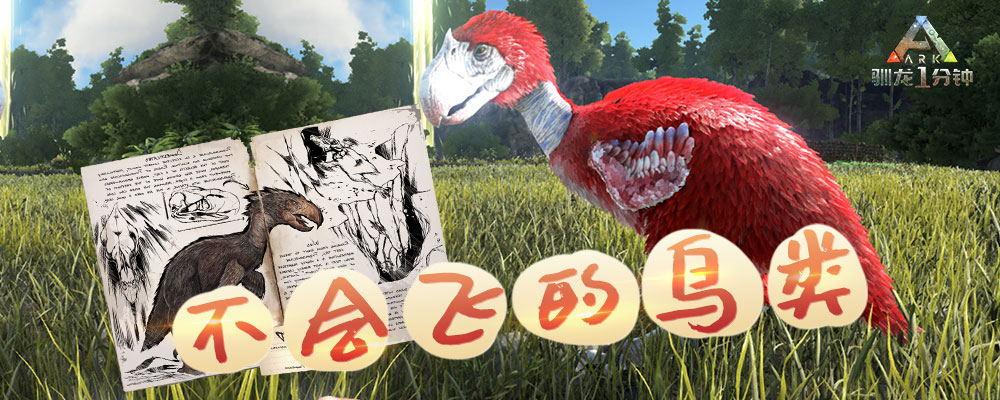 【馴龍一分鐘】第53期:不會飛的鳥類——駭鳥