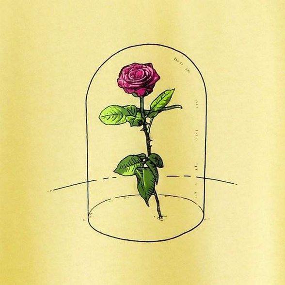 玻璃罩中的玫瑰