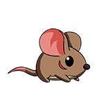 造梦西游4手机版大眼鼠