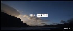《明日方舟》携手世界自然基金会共同守护万类共生,大型公益联动即将开启