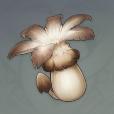 原神慕风蘑菇