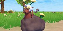 创造与魔法黑毛羊怎么得 黑毛羊属性