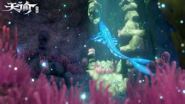 天谕手游与鲸共舞