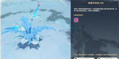 原神雪山霜覆的奇迹之树任务攻略 霜覆的奇迹之树挑战在哪