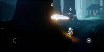 光遇荧光森林冥想在哪里 荧光小菇是什么